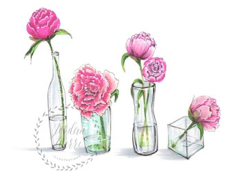 Peonies illustration print