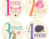 GIFT OFFER, Monthly Baby Sticker Girl, Baby Month Sticker, Woodland, Milestone Sticker, Month by Month Baby Sticker, Baby Gift, Baby Girl