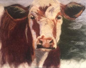 Scottish Farm Cow
