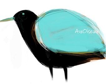 Oiseau turquoise, orange, noir, dessin numérique original, impression de qualité, type giclée. Cadre non-inclus.