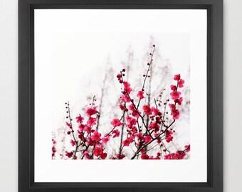 Romance in Japan- Close Up Japanese Cherry Blossom HD Photography Print, Original Fine Art, Macro Wall Art, Hand Signed