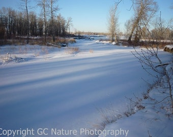Fish Creek Frozen