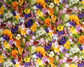 Oilcloth table cloth by the metre Pansy C970