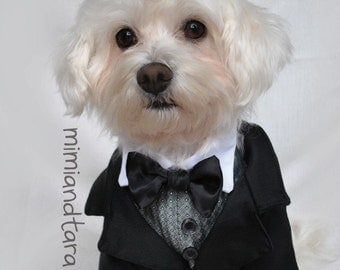 Dog Tuxedo Jacket Pattern size L, Sewing Pattern, Dog Clothes Pattern, Dog Tuxedo