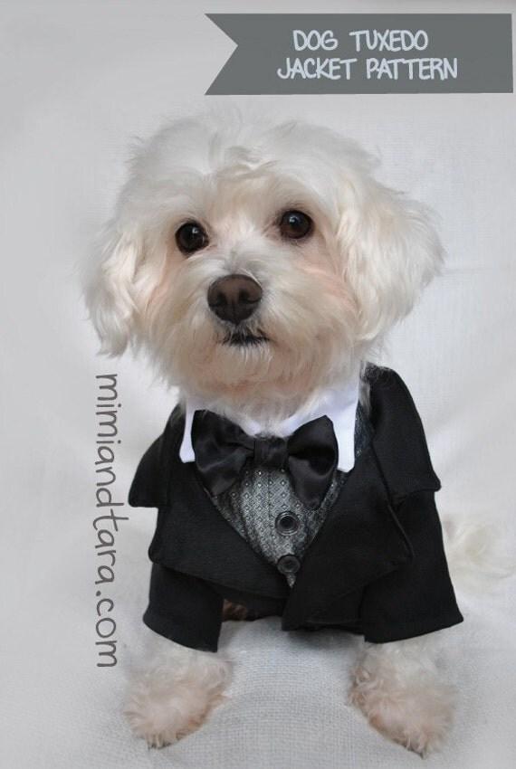 Dog Tuxedo Jacket Pattern size L Sewing Pattern Dog Clothes