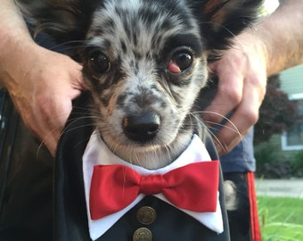 Dog Tuxedo, Dog wedding clothes