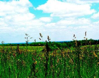 Over looking farmland