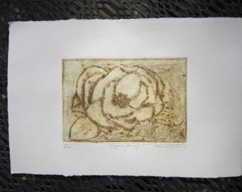 Bygone Peony original etching