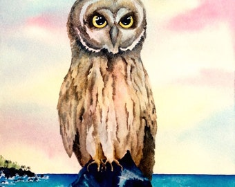 Hawaiian Owl Pueo ORIGINAL 11x14 hawaii wildlife bird Watercolor Painting by Melanie Pruitt EBSQ SFA