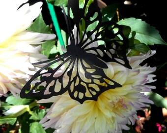 Butterflies 2 in Black
