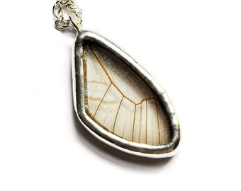 Real Butterfly Wing Necklace. REAL BUTTERFLY WING Jewelry. Transparent Glasswing Butterfly. Wing Necklace. Wing Jewelry.