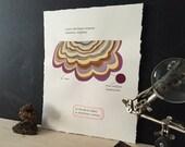 Purple Scalloped Polypore: Gouache Painting of Shelf Fungus