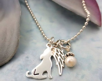 Pet Loss Necklace - Personalized Pet Necklace - Dog or Cat Memorial Necklace - Pet Remembrance Jewelry - Pet Jewelry - Sympathy Gift