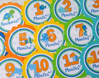 Under the Sea Baby's 1st Year Tags / Make Your Own Photo Banner / Set of 13 Tags Newborn through 12 Months - 0023