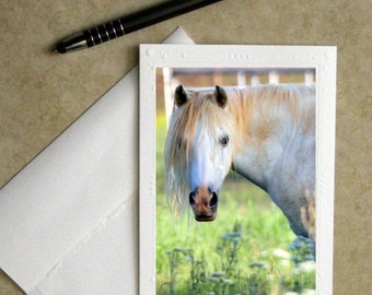 horse stationary, cowgirl card, cowboy card, horse greeting card, horse photo notecard, Father's Day card, greeting card, photo card