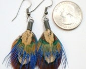 Small Natural Color Pheasant Feather Earrings- Ready to Ship