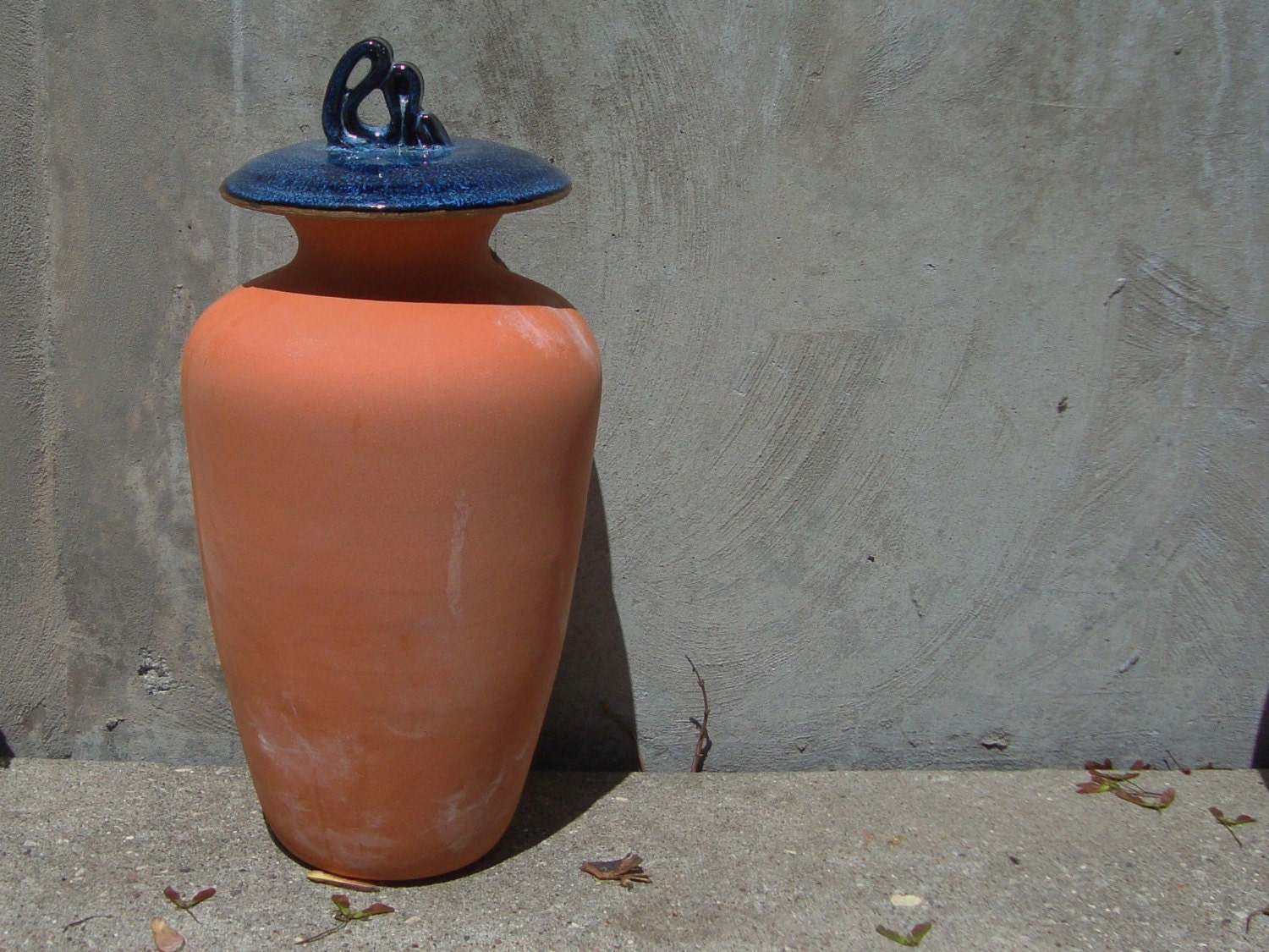 Olla Garden Irrigation Pot With Blue And Black Lid 1 25