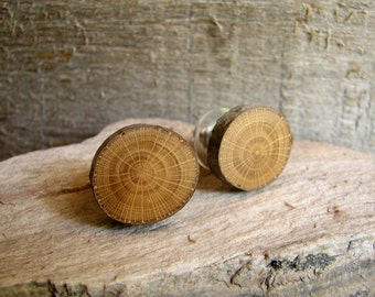 XXL Rustic Peach - Prunus persica - Twig Wooden Stud Earrings by Tanja Sova