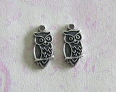 NEW 2 Tiny Silver Owl Charms 3673