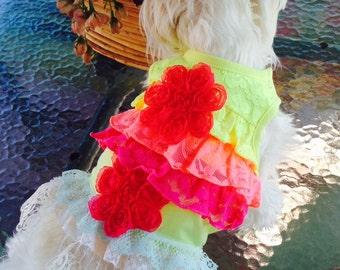Small Up-cycle Rainbow Ruffle T Shirt Dress Chihuahua Yorkie Maltese Dog