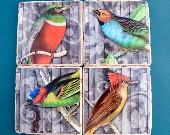 Travertine Tile Coaster Set  Vintage Birds