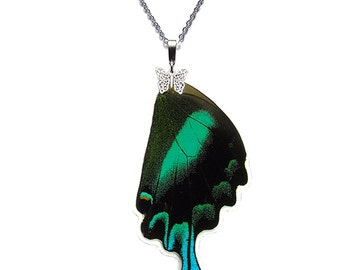 Real Butterfly WingNecklace (Papilio Blumei Hindwing - N024)