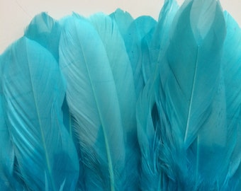 OMBRE GOOSE  FEATHERS ,  Two Tone Aqua Blue, Turquoise  / 971