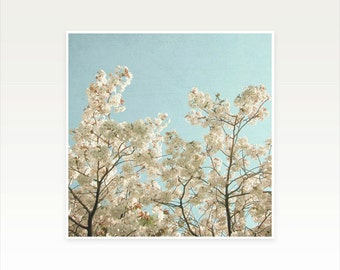 Cherry Blossom Photography, Flower Art, Pastel Decor, Bedroom Art, Spring, Floral - Spring Flowers