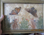 Soft Silky MILKWEED,  Real  BUTTERFLIES, and Dried Flowers