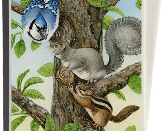 Nutty Situation Greeting Card by Tracy Lizotte