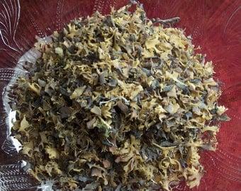 Organic Irish Moss dried herb by the ounce - cut sifted bulk herb for tinctures salves bath products teas oz lb Chondrus crispus carrageenan