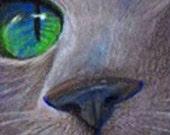 original art  aceo drawing cat face green eye