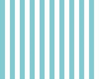 Aqua and White Half Inch Small Stripes Fabric from Riley Blake Designs - 1/2 Half Yard