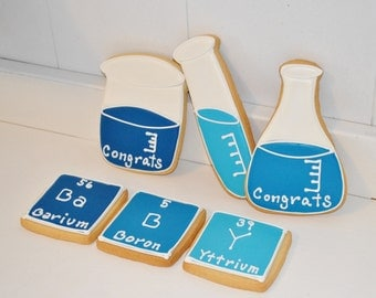 Baby Shower Science Hand Decorated Sugar Cookies