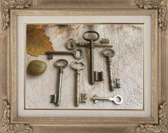 sale - antique and vintage keys - old ornate skeleton keys - 7 beautiful large iron keys (S-27b).