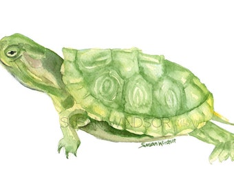 Turtle Watercolor Painting Giclee Reproduction - 6 x 4 in -- Nursery Art  -- Fine Art Print