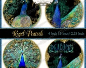 Digital  Peacock Round Collage 2.25, 3, 4 inch Wedding Favors Regal Gold Multi Size,  Favor Gift Tags Peacock Feathers Gold Glitter Digital