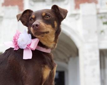 Satin wedding designer dog flower collars, ring bearer, dog wedding collar, dog satin collar, metal buckle upgrade available