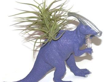 Dinosaur planter. Patrick the purple Parasaurolophus dinosaur with air plant.