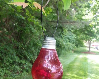 Upcycled Light Bulb Vase - Hanging Light Bulb Vase - Colored Light Bulb Vase with Matching Wire