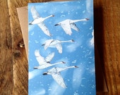 Swans // Greeting Card