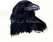 Raven IV -  Original Watercolor Painting, painted by J.L. Raven - 8x6inches