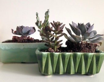 Spring Planting - Two Vintage Upco Green Pottery Planters