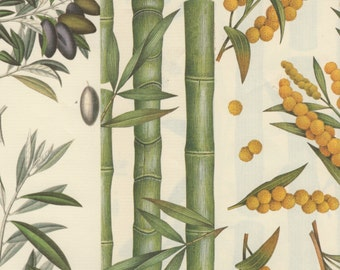 Exotic Botanical Designs 12x12 Art Papers for Gift Wrap, Scrapbooking, Collage and More