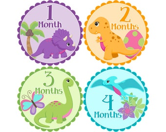 Monthly Stickers, Girls Photo Props, Monthly Baby Stickers, Monthly Baby Photos, Baby Gift, Milestone Stickers, Girl Dinosaurs (G227)
