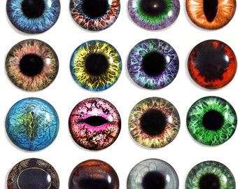 16 25mm Wholesale Glass Eye Flatback Cabochons Bulk Order 1 Inch for Crafting Taxidermy and Jewelry Making