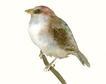 Original Watercolor Painting Sparrow