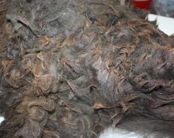 Black Walnut RAW unwashed alpaca