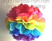 Bright Rainbow Pom Pom, Rainbow Pom Pom, Party Decorations, 1st Birthday, Wedding Decoration, Party decor, Party Supplies, Tissue Paper Pom