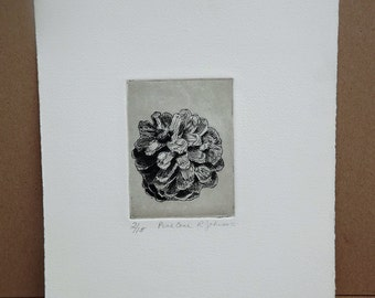 Mid Century Black and White Etching by California artist R. Lin Johnson titled Pine Cone